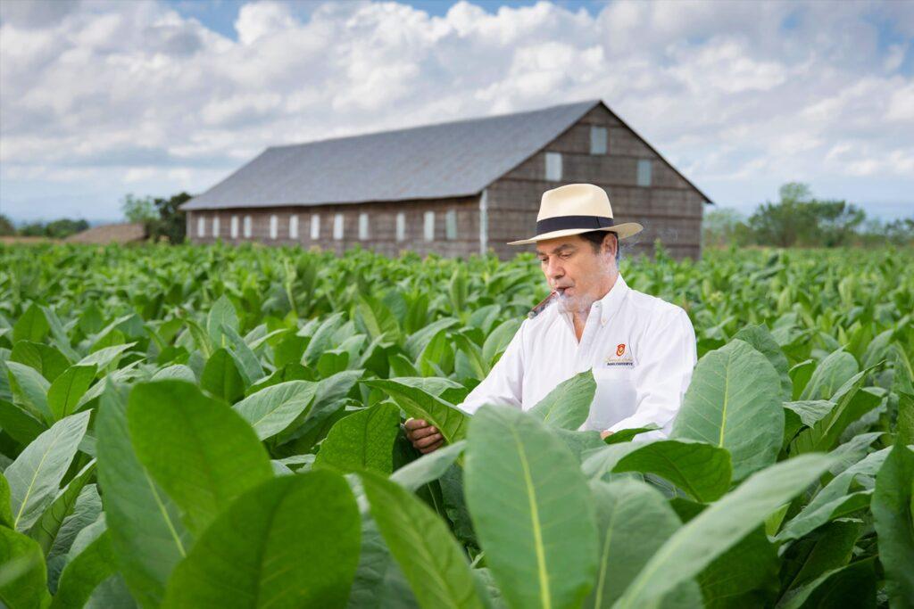 Guillermo sjekker planter